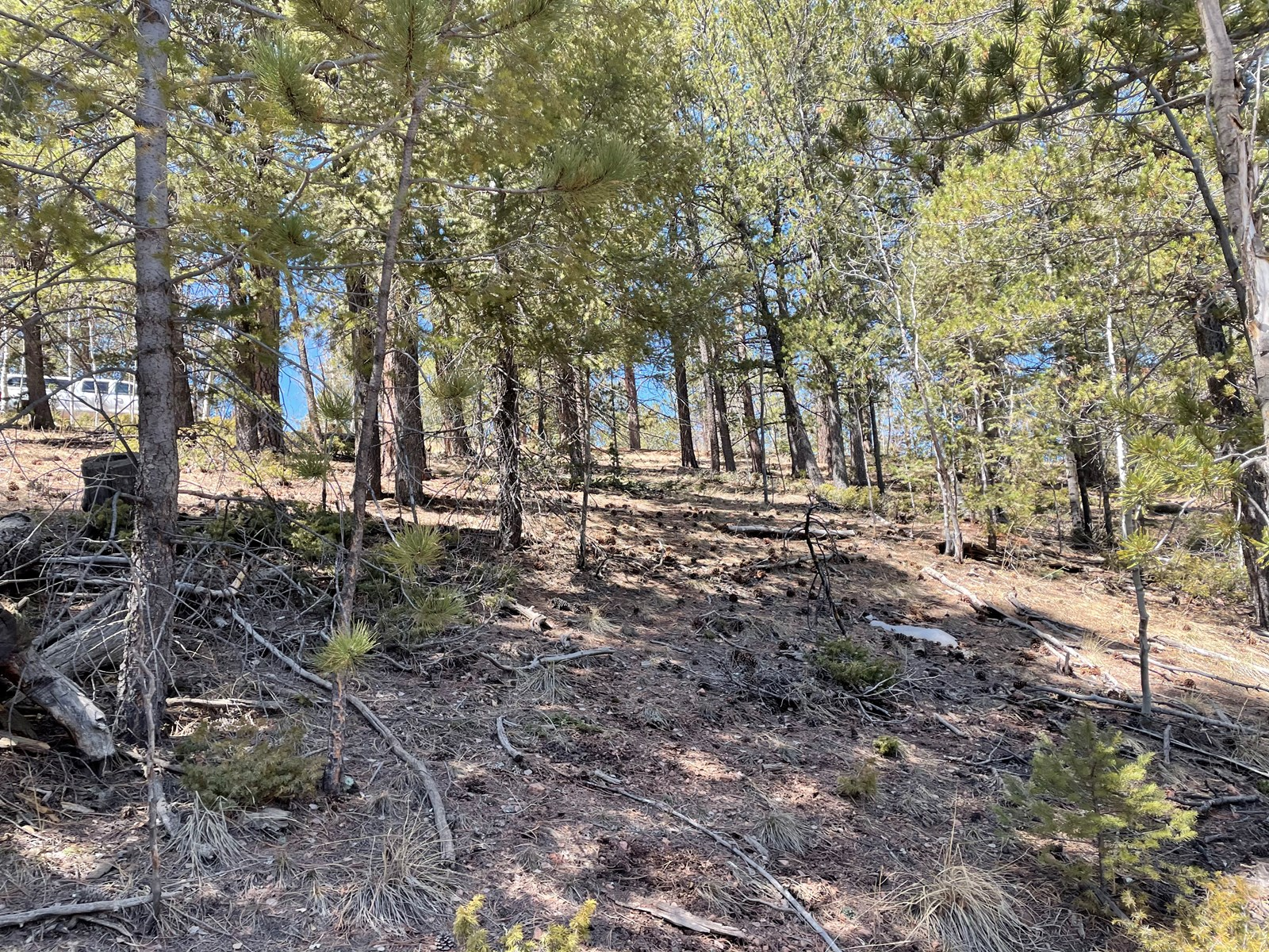 Land for sale in Colorado mountains