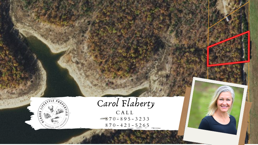 Timberland Lot Near White River in Lead Hill, AR