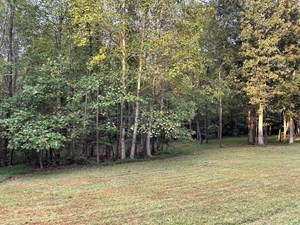 LAND FOR SALE , NEAR LAKE, CAMDEN TENNESSEE, BENTON COUNTY