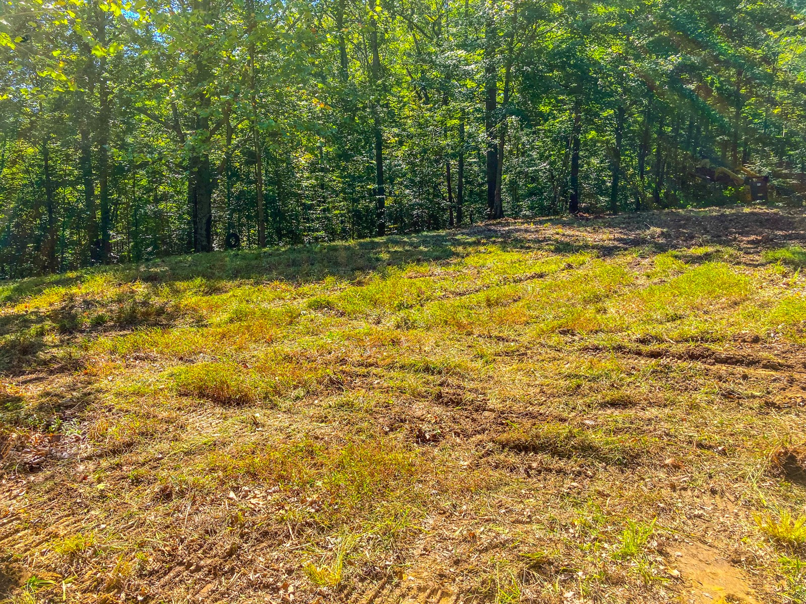 Indiana Hunting and Recreational Land – National Forest