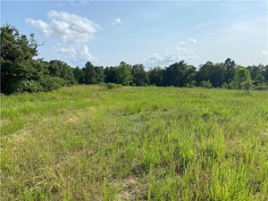 77 ACRES RECREATION PROPERTY, MADISON COUNTY, AR FOR SALE