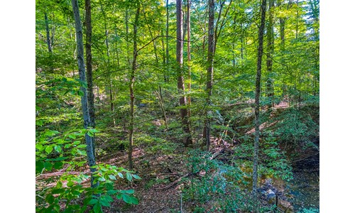 Monroe County Indiana Recreational Land for Sale