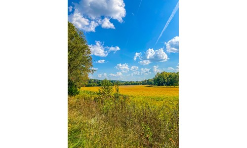Lawrence County Indiana Land for Sale | Farm + Recreational