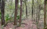 4.88 ACRES WITH SR 51 FRONTAGE FOR ONLY $60,000!!