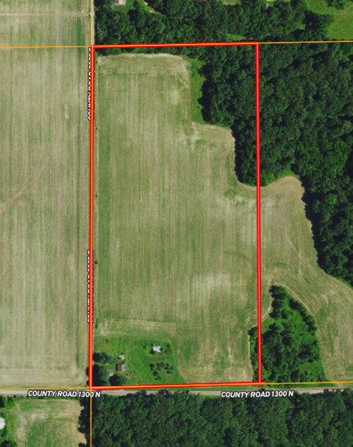20 ACRES FARMLAND WITH HOMESITE FOR SALE AT AUCTION