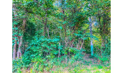 TRACT 2 - Bloomington Indiana Land for Sale