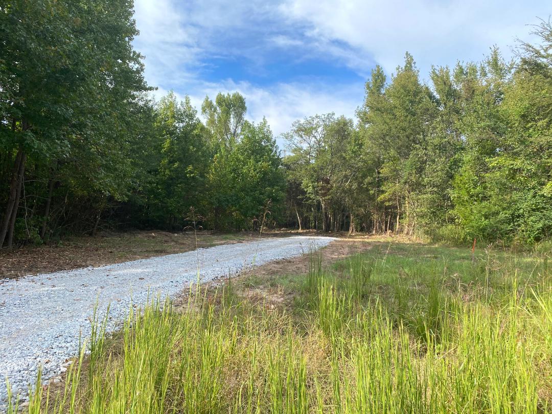 20 acres for sale Gilmer, TX