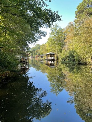OH MY...LIVING LAKE LIFE ON LAKE GASTON, VA
