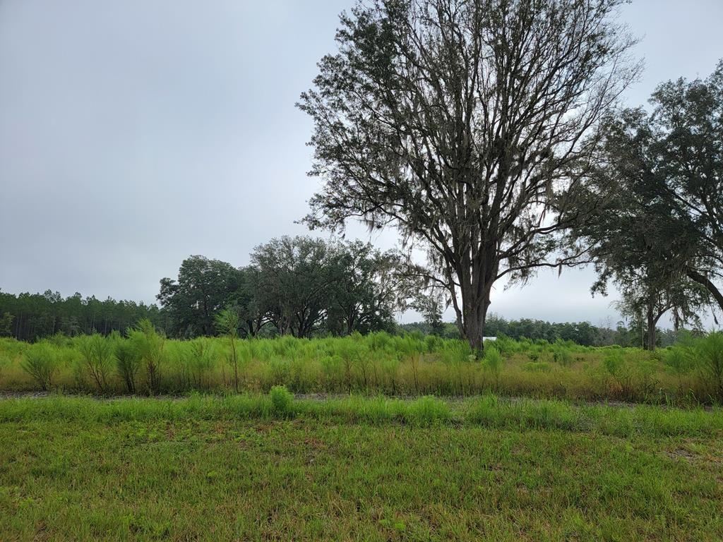 20.81 ACRES w/barn, well, power + gated community + Hunting