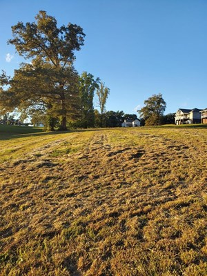 .51 ACRES IN WATERS EDGE SUBDIVISION IN EAST TN FOR SALE