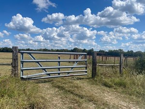 RANCH/ RECREATIONAL IN RED RIVER COUNTY, TEXAS!