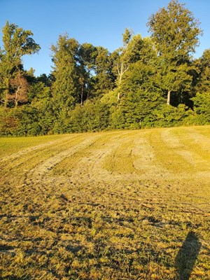 .64 ACRE LOT IN WATERS EDGE SUBDIVISION IN EAST TN FOR SALE