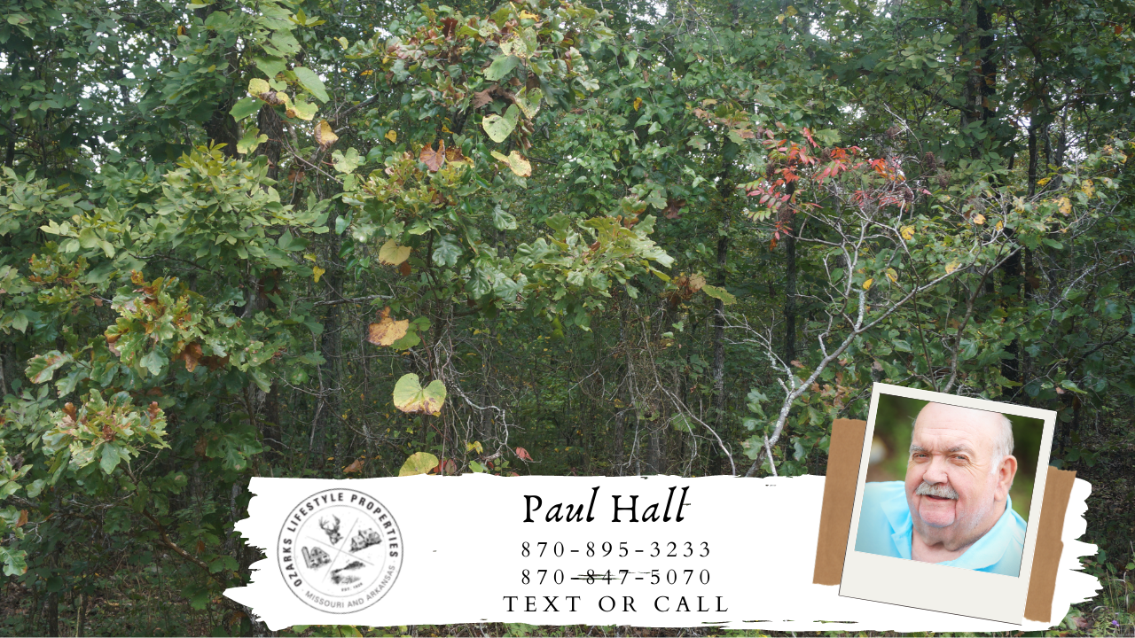 Land For Sale In Mammoth Spring, AR