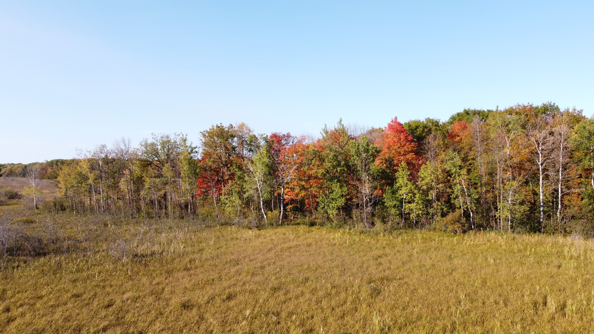 Mille Lacs Hunting Land