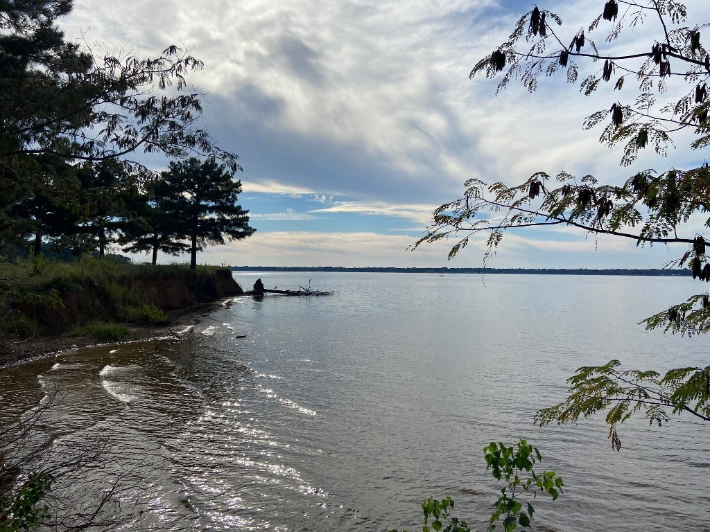 WATERFRONT LOT FOR SALE ON LAKE PALESTINE | EAST TX