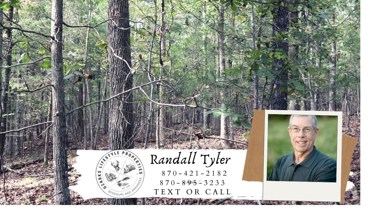 Ozarks Wooded Acreage for sale near Salem Arkansas