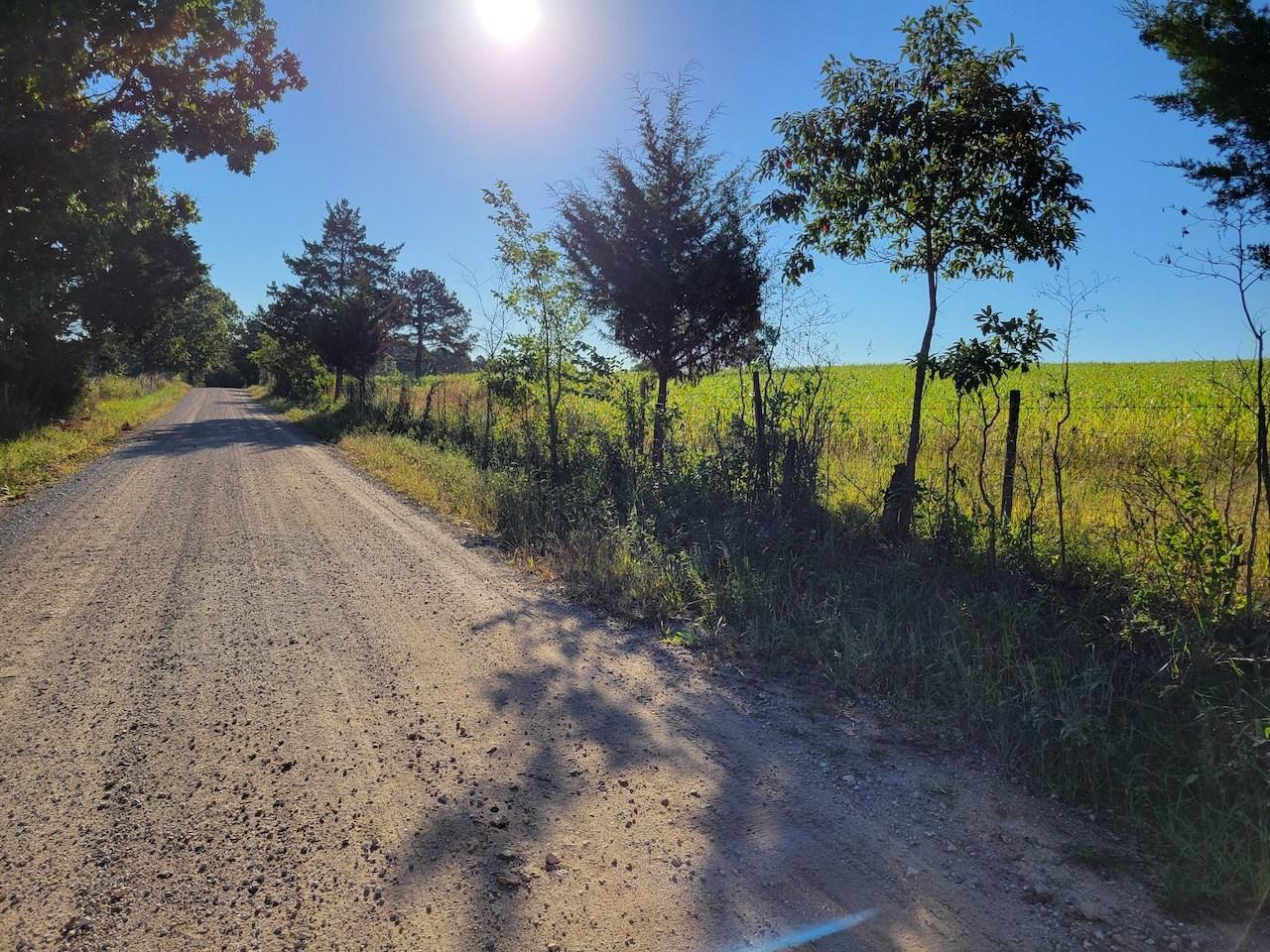 Southern Missouri Land for Sale - Mountain Grove, MO