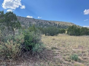 GORGEOUS VIEWS -CLOSE TO TOWN ELECTRIC NEARBY- OVER 2 ACRES