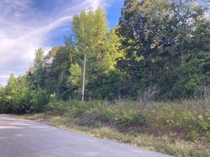 64 ACRES OF LAND FOR SALE IN BATESVILLE, AR
