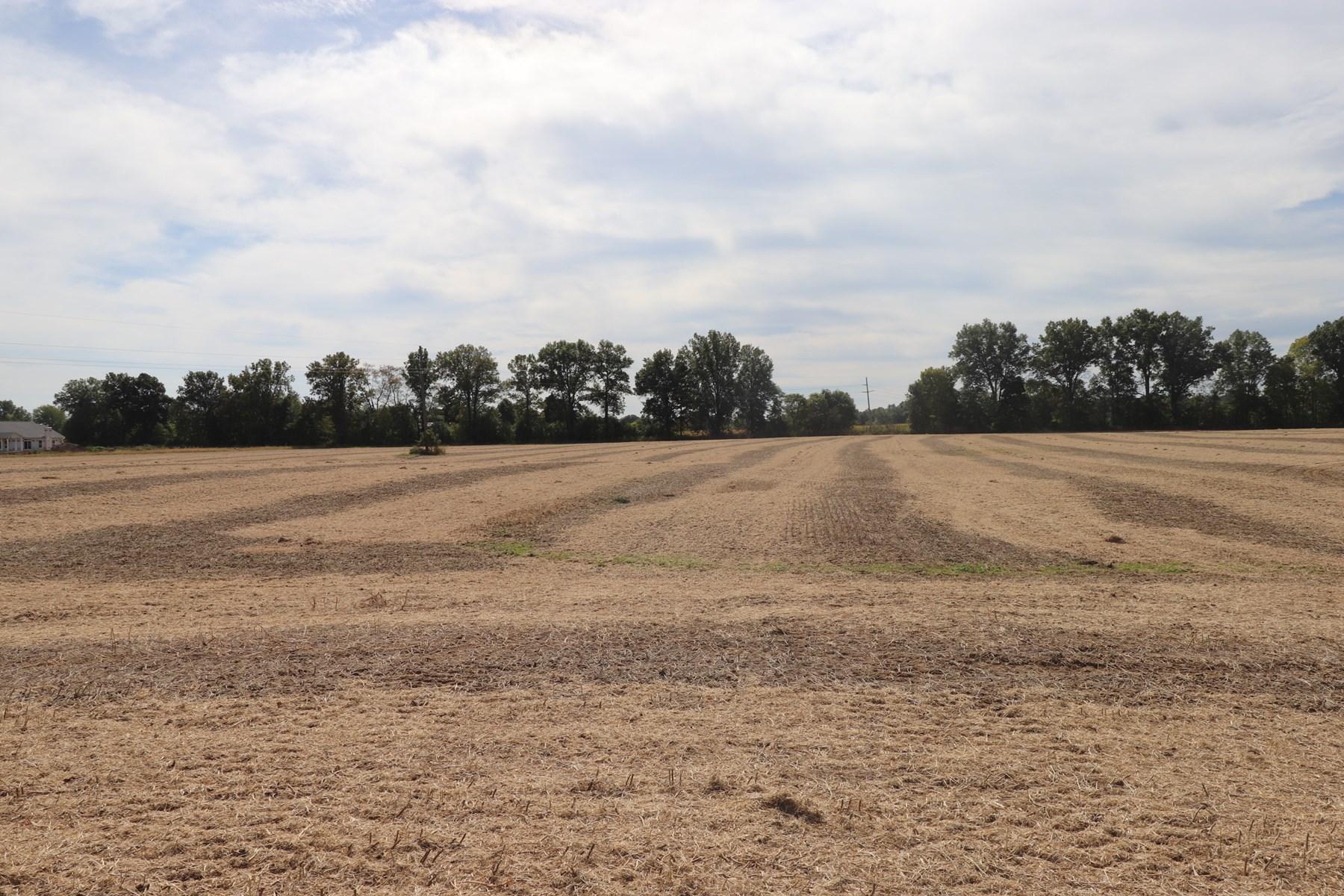 Two Acre Building Lot Delaware County Buckeye Valley Schools
