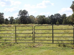 50+ ACRES OF RECREATIONAL LAND IN BOWIE COUNTY, TEXAS