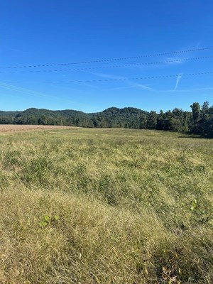 LAND FOR SALE WITH CREEK FRONTAGE, ROWAN COUNTY KY