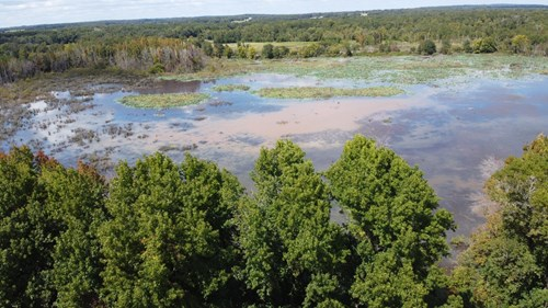 Small Hunting Acreage for Sale in East TX Henderson County