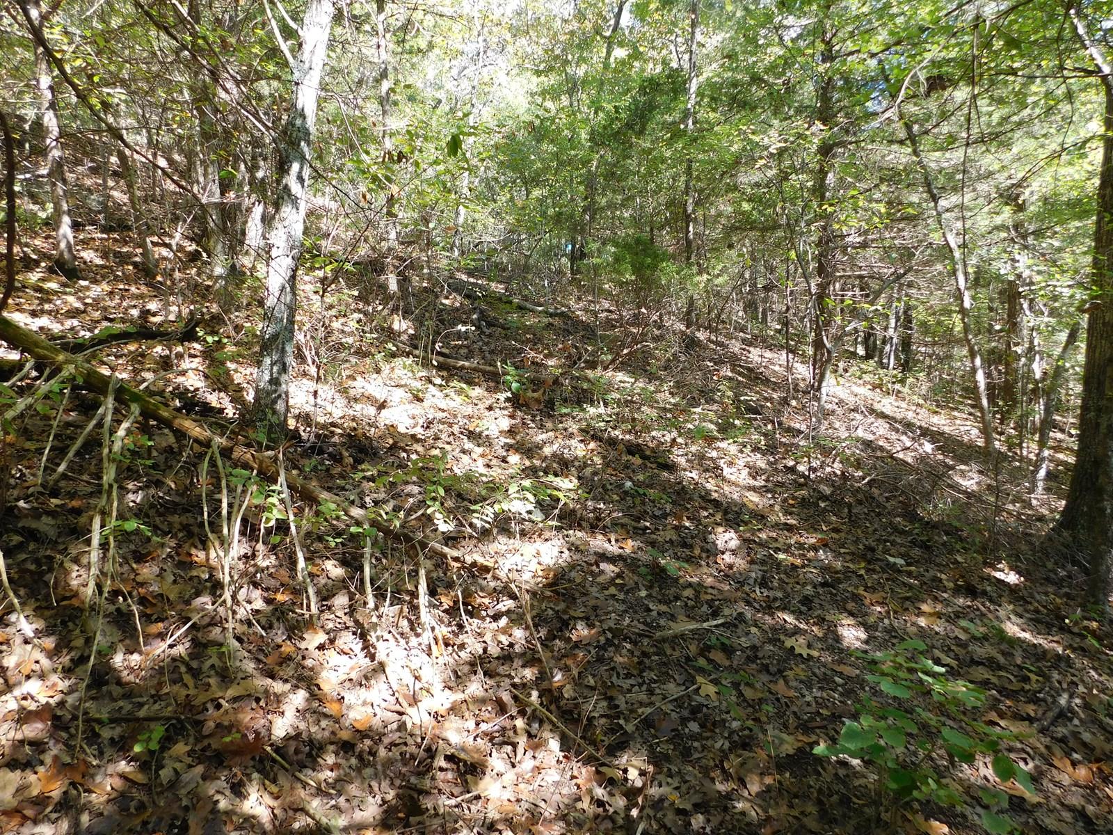 29 Acres Ozark Mountain Land For Sale Near Lakes