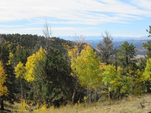 Private Colorado Mountain Ranch 1 Hour to Colorado Springs