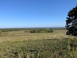 SOUTHERN MISSOURI LAND FOR SALE -TEXAS COUNTY, MO!