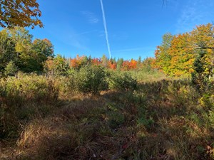 AFFORDABLE MAINE HUNTING AND INVESTMENT LAND