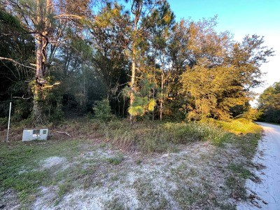 5 ACRE LOT WITH PRIVACY IN MCALPIN, FLORIDA