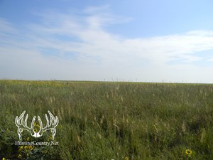 160 ACRES M/L OF KIOWA COUNTY CRP GRASS AND HUNTING LAND