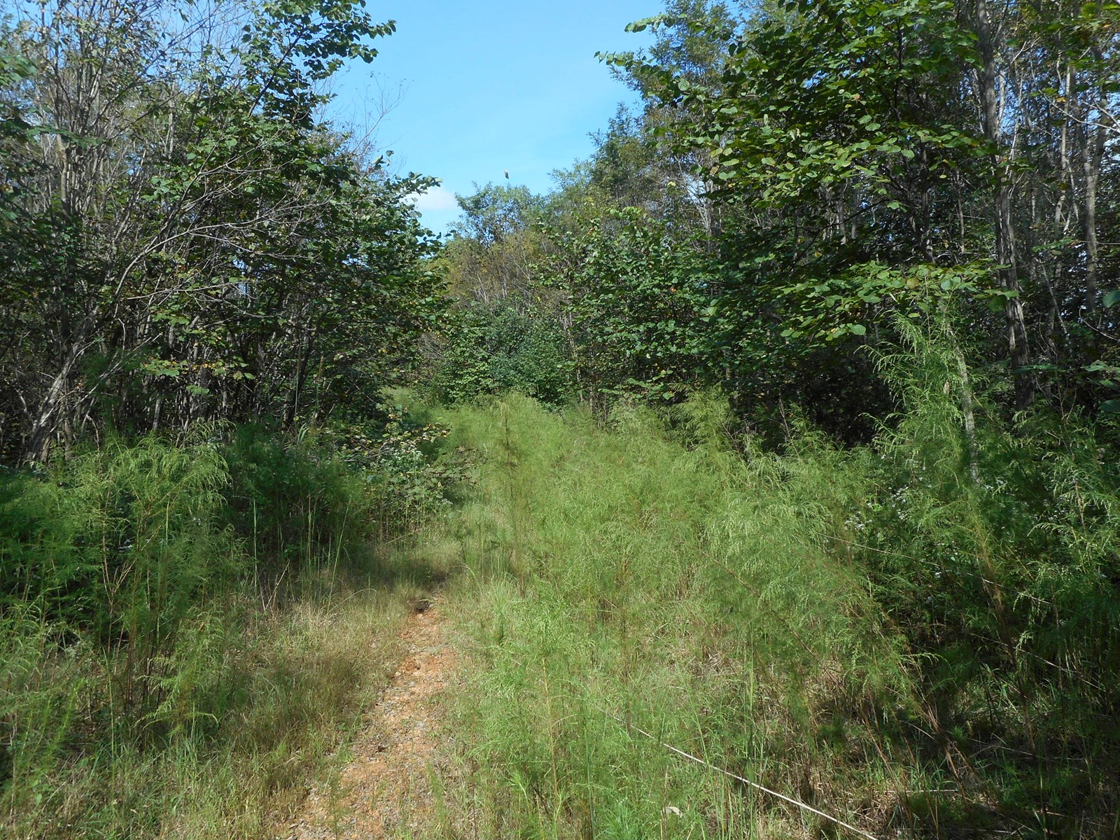 RURAL TENNESSEE PROPERTY FOR SALE!