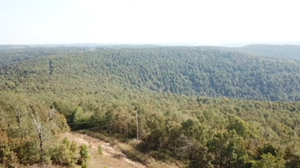 38 ACRES WITH REMARKABLE VIEW OF THE OZARK MOUNTAINS.