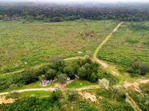 398 ACRES LAND FOR SALE ON BEAVER CREEK AMITE COUNTY, MS