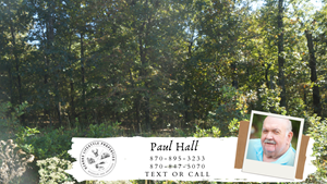 NICE LOT IN ASH FLAT, AR FOR SALE