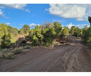 NEVADA RESIDENTIAL BUILDABLE LAND FOR SALE NEAR PIOCHE NV