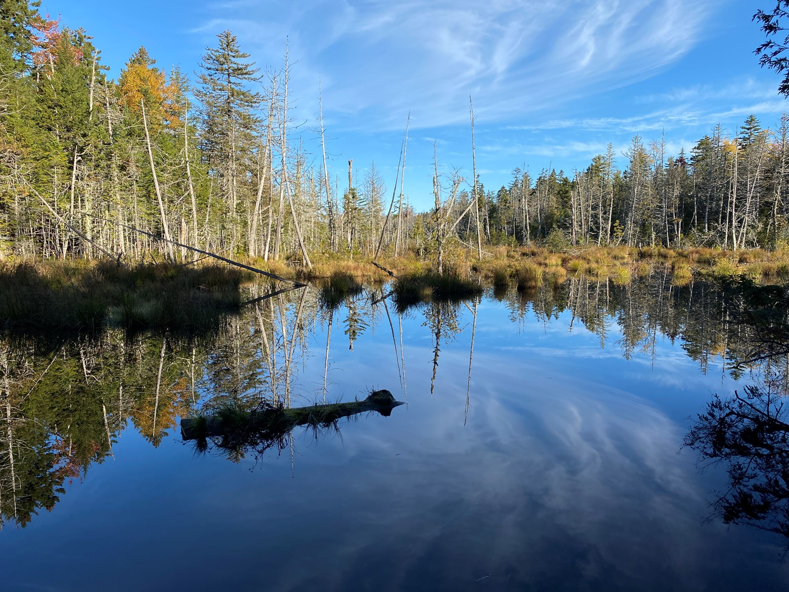 Maine Recreation and Investment Land