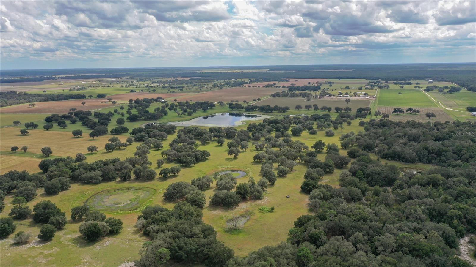 Stunning Florida Farm Land for Sale 76 Acres