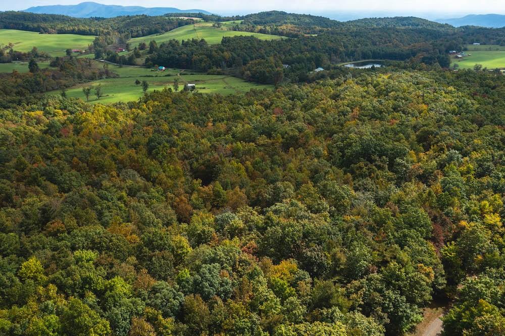 Wooded Acreage for Sale in Meadows of Dan VA