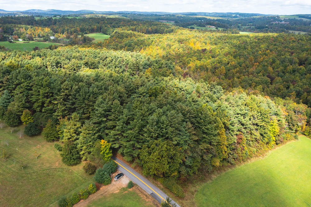 Land with Stream for Sale in Patrick County VA!