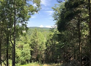 WOODED LAND FOR SALE IN CHRISTIANSBURG VA