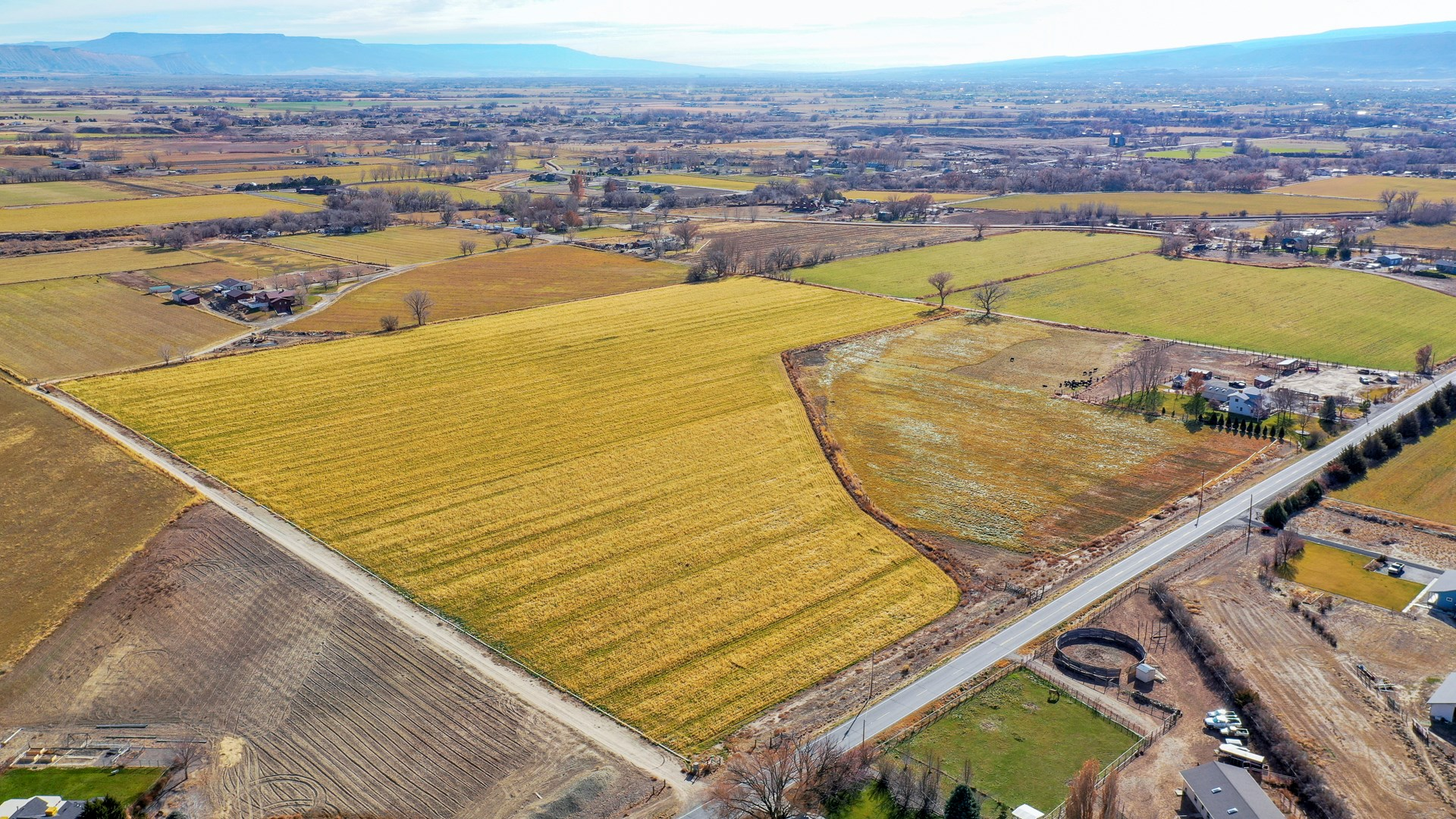 Irrigated Farm Land for Sale