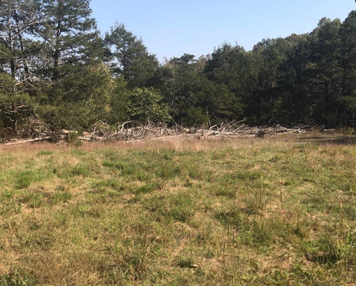 Deer Hunting / Turkey Hunting Property in Arkansas