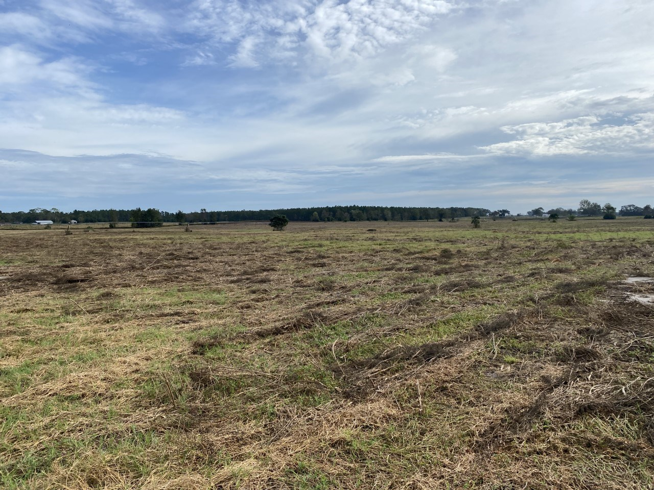 20 ACRE PASTURE FARMLAND FOR ONLY $140,000!!!!