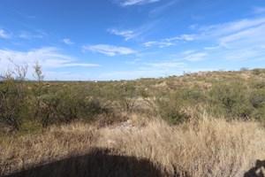 VACANT LAND NEAR FT HUACHUCA, AZ