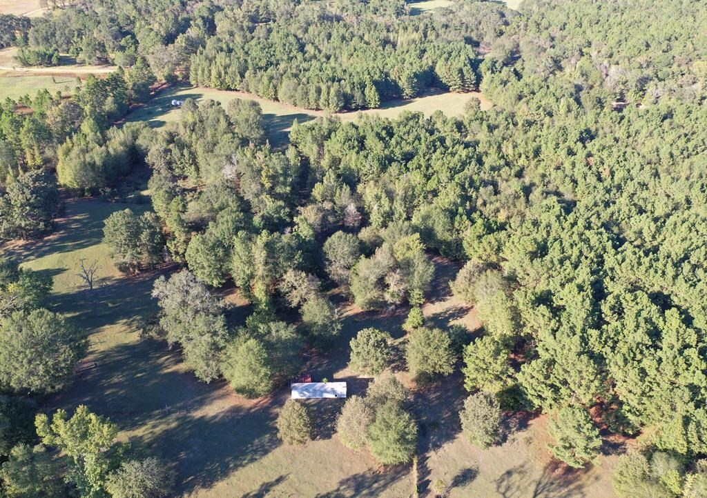 20+ ACRES FOR SALE IN EAST TEXAS HUNTING LAND WOODED