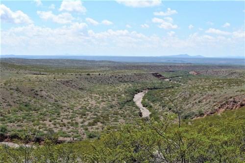 *NEW* 260 Head Scenic Carlisle Ranch, Virden, NM - $2,800,00