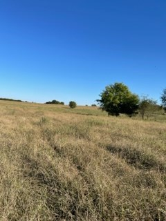 Pasture, Hunting and Recreational Land for Sale